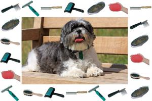 Come spazzolare il vostro cane: Tipi di spazzole